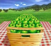 Pommes vertes dans une boîte en bois sur une table, avec le paysage et les Apple-arbres au fond. Photo stock