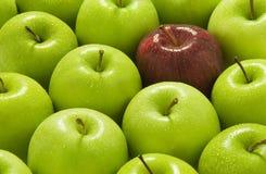 Pommes vertes et rouges Photographie stock libre de droits