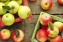 Pommes vertes et rouges Image stock