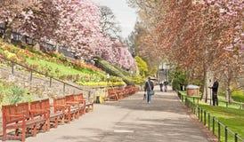 Pomników siedzenia w książe Ulicznych ogródach, Edynburg Zdjęcia Royalty Free