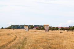 Pomnika kamień w łące Obraz Royalty Free