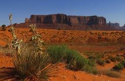 Pomnikowa dolina, Utah, usa Obraz Stock