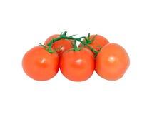 Pomodori 1 Fotografia Stock Libera da Diritti
