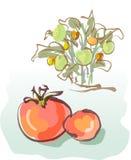 Pomodori illustrazione di stock