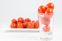 Pomodori Fotografie Stock Libere da Diritti