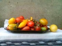 Pomodori 38 fotografie stock