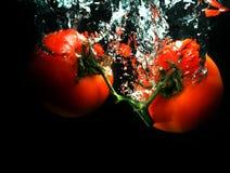 Pomodori in acqua fotografie stock libere da diritti