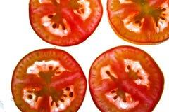 Pomodori in acqua immagini stock libere da diritti