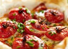 Pomodori al forno del forno farciti con spinaci, formaggio e le erbe, fine su fotografie stock libere da diritti