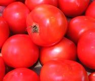 Pomodori al mercato del ` s dell'agricoltore immagine stock