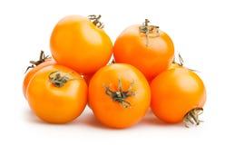 Pomodori arancioni Immagine Stock