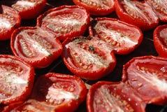 Pomodori asciutti Fotografia Stock Libera da Diritti
