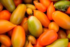 Pomodori Assorted Fotografie Stock