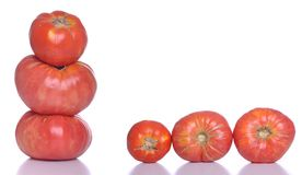 Pomodori biologici Fotografia Stock Libera da Diritti