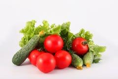 Pomodori, cetrioli, lattuga, prezzemolo, verdura Immagini Stock