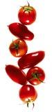 Pomodori che compongono Fotografia Stock Libera da Diritti