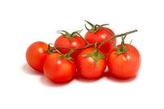 Pomodori ciliegia Fotografie Stock