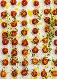 Pomodori ciliegia fotografie stock libere da diritti