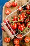 Pomodori ciliegia immagine stock libera da diritti