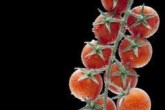 Pomodori ciliegia in acqua con le bolle di aria Immagine Stock Libera da Diritti