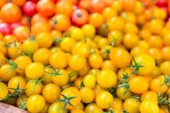 Pomodori ciliegia dorati precoci organici al mercato del ` degli agricoltori Fotografie Stock