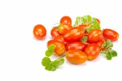 Pomodori ciliegia freschi fotografia stock libera da diritti