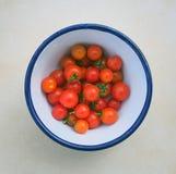 Pomodori ciliegia maturi Fotografia Stock Libera da Diritti