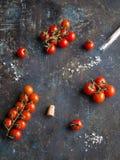 Pomodori ciliegia maturi rossi su un ramo e su un grande sale marino spruzzati da un tubo di vetro Fotografie Stock Libere da Diritti