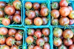 Pomodori ciliegia neri organici ad un mercato del ` s dell'agricoltore Fotografia Stock