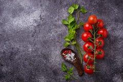 Pomodori ciliegia, prezzemolo e sale fotografia stock libera da diritti