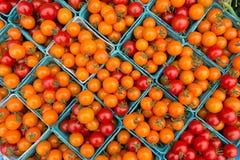 Pomodori ciliegia rossi organici ad un mercato del ` s dell'agricoltore Immagine Stock Libera da Diritti