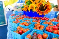Pomodori ciliegia rossi organici ad un mercato del ` s dell'agricoltore Fotografia Stock Libera da Diritti