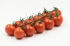 Pomodori ciliegia rumeni freschi di eco Immagini Stock Libere da Diritti