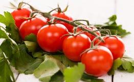 Pomodori ciliegia su un ramo con prezzemolo Fotografia Stock Libera da Diritti