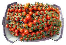 Pomodori ciliegia sui ramoscelli, impilati in una scatola. Immagini Stock Libere da Diritti
