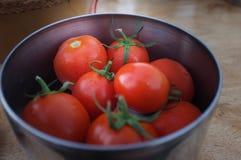 Pomodori in ciotola del metallo fotografia stock