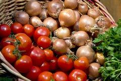 Pomodori, cipolle e basilico Fotografia Stock Libera da Diritti