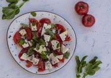 Pomodori con basilico Fotografie Stock