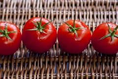 Pomodori con i piccioli Fotografie Stock
