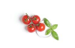 Pomodori con il foglio del basilico Fotografia Stock Libera da Diritti