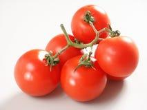 Pomodori con la filiale Fotografie Stock