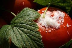 Pomodori con la macro dei fogli e del sale del ribes Fotografia Stock