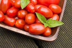 Pomodori con le tavole di pavimento di Basil In Wooden Bowl On Fotografia Stock Libera da Diritti