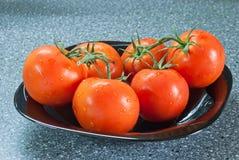 Pomodori con sopra una banda nera Fotografia Stock