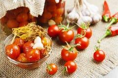 Pomodori d'inscatolamento Immagini Stock