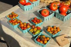 Pomodori da vendere al mercato di un agricoltore Fotografie Stock Libere da Diritti
