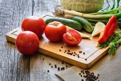 pomodori degli ortaggi freschi, cetriolo, pepers del peperoncino rosso, aneto su fondo di legno fotografia stock