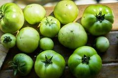 Pomodori dei fratelli Immagini Stock