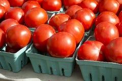 Pomodori del mercato Fotografia Stock Libera da Diritti