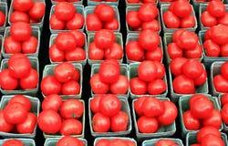 Pomodori del mercato dell'azienda agricola Fotografia Stock Libera da Diritti